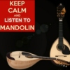 MANDOLIN KING ! .. ' YOU MAY NEVER PASS THIS WAY AGAIN '
