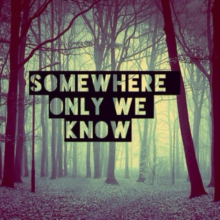 Somewhere only we know- Grey's