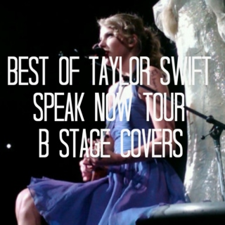 Best of Taylor Swift Speak Now Tour B Stage Covers