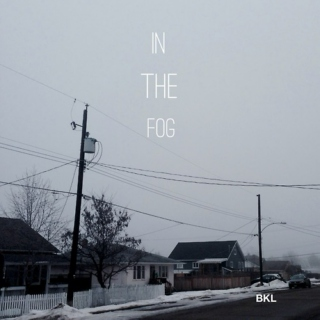 in the fog
