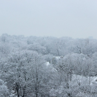 Long Winter Playlist