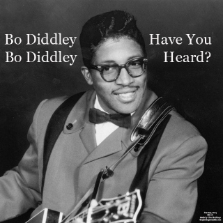 Bo Diddley, Bo Diddley Have You Heard?