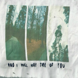 and i will not tire of you
