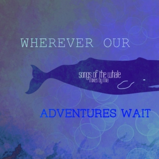 Wherever Our Adventures Wait