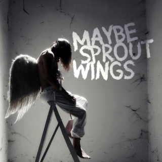 maybe sprout wings