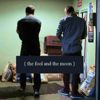 The fool and the moon