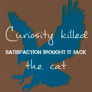 Curiosity Killed the Cat (Satisfaction Brought It Back)
