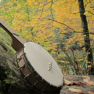Banjos in the Woods