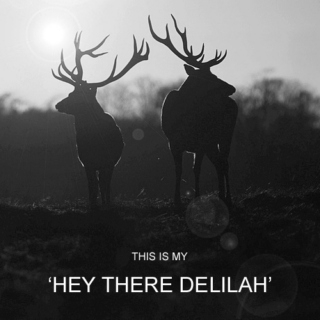 This Is My 'Hey There Delilah'