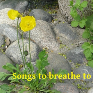 Songs to breathe to