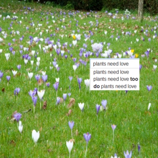 ❀songs for ur plant friends❀