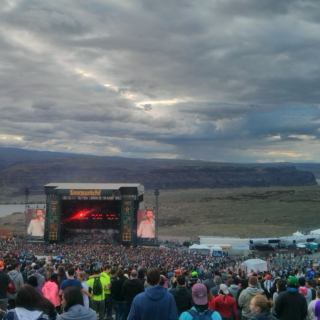 Sasquatch July 2014