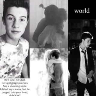 relationship with shawn