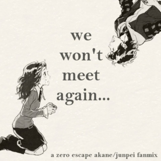 We Won't Meet Again...