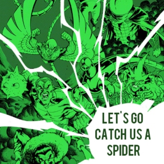 let's go catch us a spider