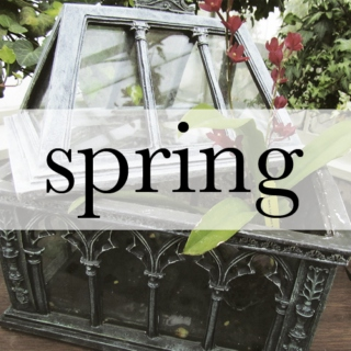 spring is upon us