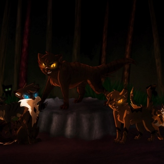 Such Horrible Things (Darkforest cats)