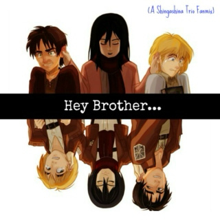 Hey Brother (A Shingashina Trio Fanmix)