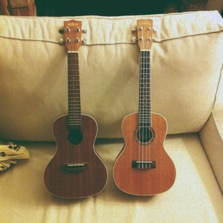 acoustic therapy
