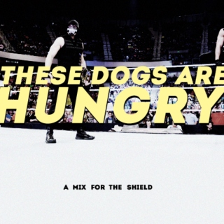 THESE DOGS ARE HUNGRY