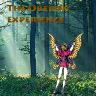 The Oberon Experience