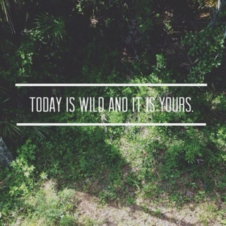 today is wild, and it is yours