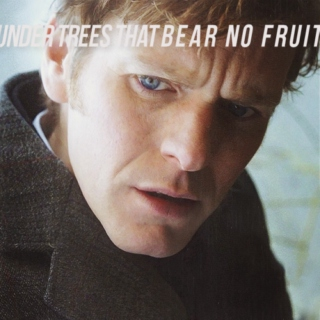 under trees that bear no fruit