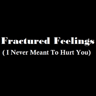 Fractured Feelings (I Never Meant To Hurt You)