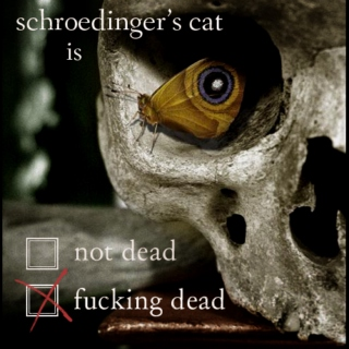 schroedinger's cat is fucking dead