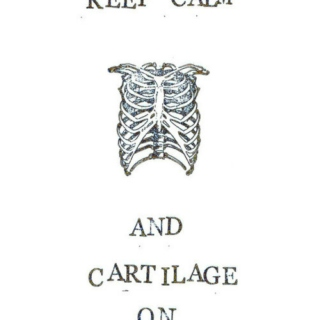 Keep calm and cartilage on