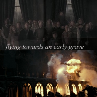 flying towards an early grave