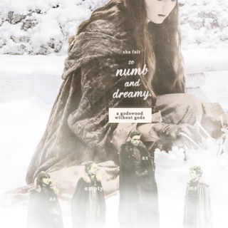 Numb and dreamy || Sansa Stark