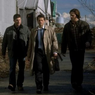 This is it. Team Free Will.