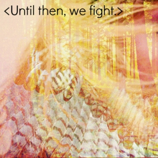 Until Then We Fight