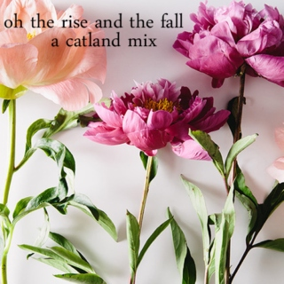 oh the rise and the fall