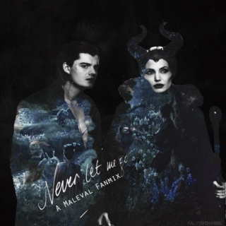 never let me go - maleficent/diaval