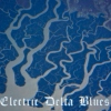 Electric Delta Blues