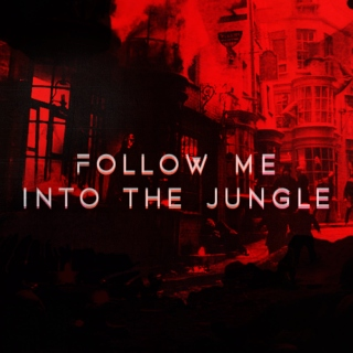 follow me into the jungle