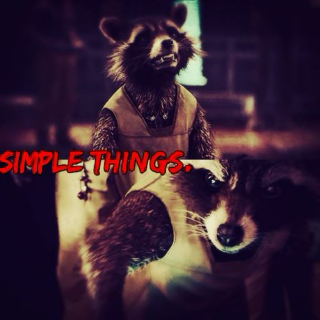 SIMPLE THINGS.