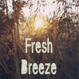Fresh Breeze