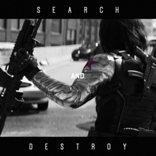 search and destroy;