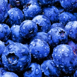 Blueberry Cove