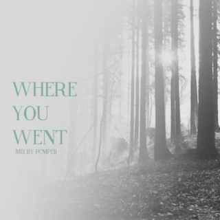 where you went