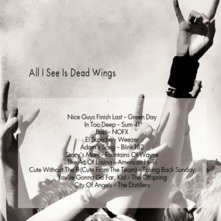 ✘ all i see is dead wings ✘