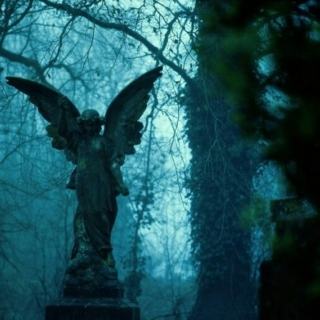 In the Shadows of Angels