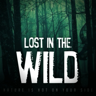 Lost in the Wild [Writing Mix]