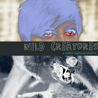 wild creatures (a caitlin lightcap playlist)