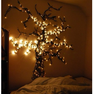 Christmas lights & cozy nights
