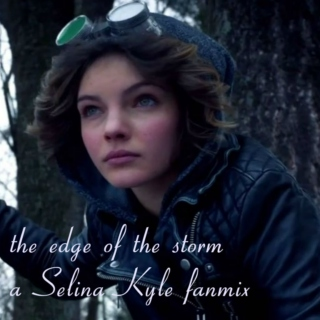 the edge of the storm - Selina Kyle