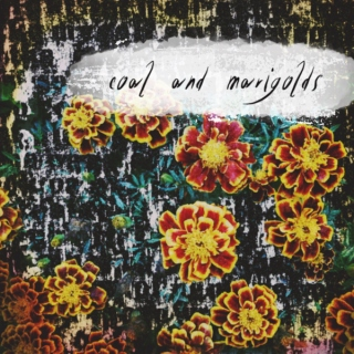 coal and marigolds